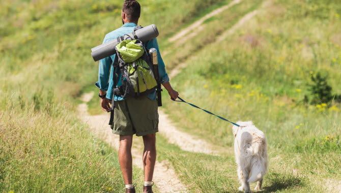Man med ryggsäck som vandrar med en hund i koppel.