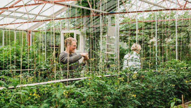 Trädgårdsmästare vid Björnhyltans Trädgård