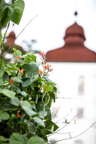 Läckö Garden- Photo Cred Robert Dahlberg