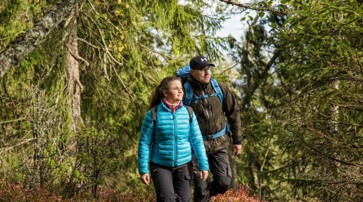 en man och kvinna som vandrar i skogen.
