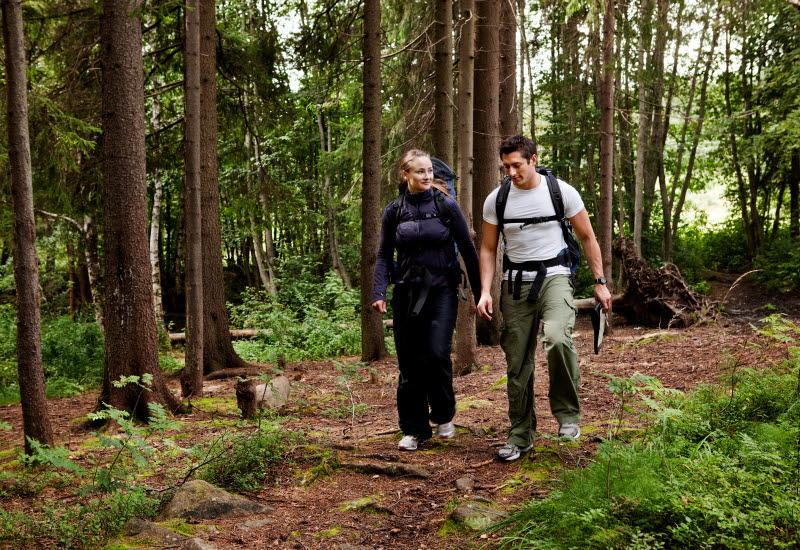 Två personer som vandrar på en stig i skogen.