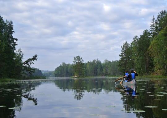 kanot paddla i spegelblankt vatten i morgondimman