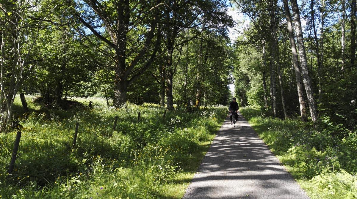 Ulricehamn har vackra och bilfria cykelvägar. På bild är banvallen som till exempel Ätradalsleden, Sjuhäradsrundan och Åsunden Runt går på.