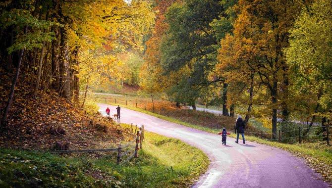 En familj gåendes på vägen vid Silverfallet en färgsprakande höstdag.