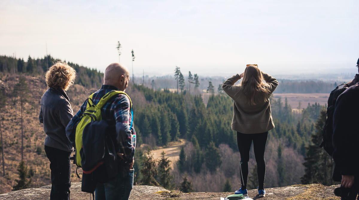 Fyra personer som står och kikar på utsikten vid Vråhålan.