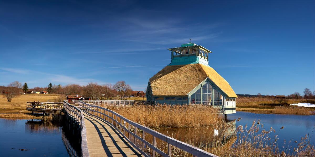 Naturum Hornborgasjn - Picture of Hornborgasjon