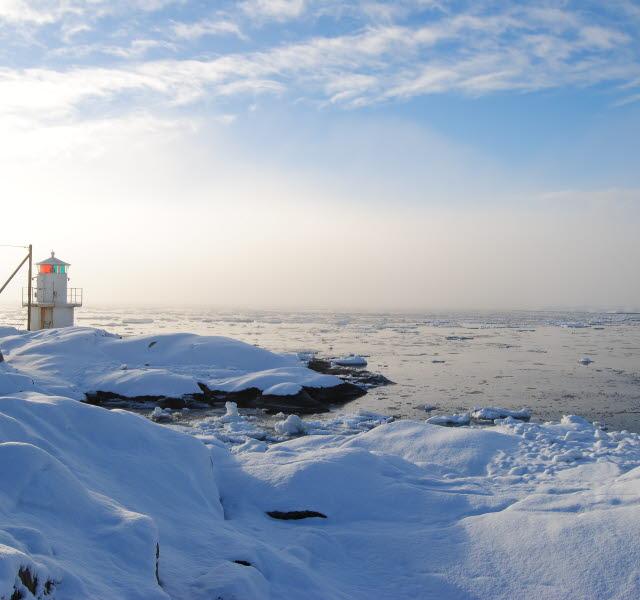 Klåva fyr i vinterlandskap, snötäckta klippor i vintersol