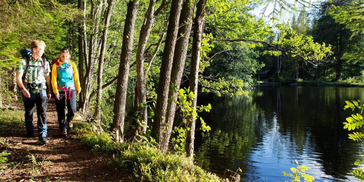 två personer promenerar i skogen