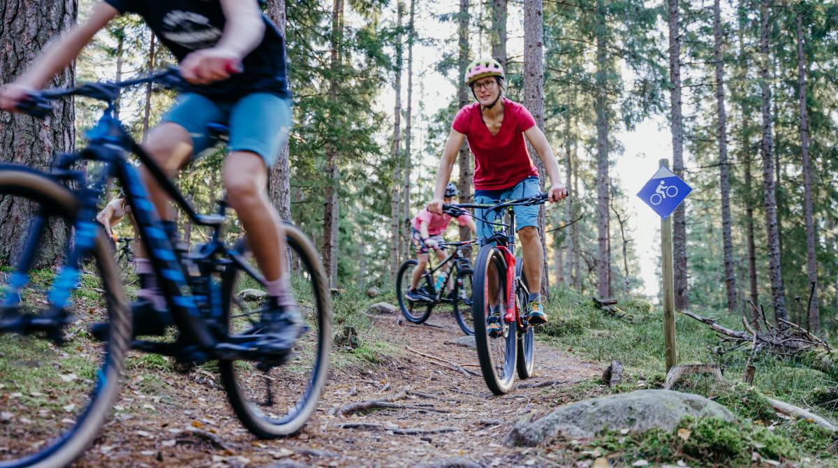 Cykla Mountain Bike vid Lassalyckan