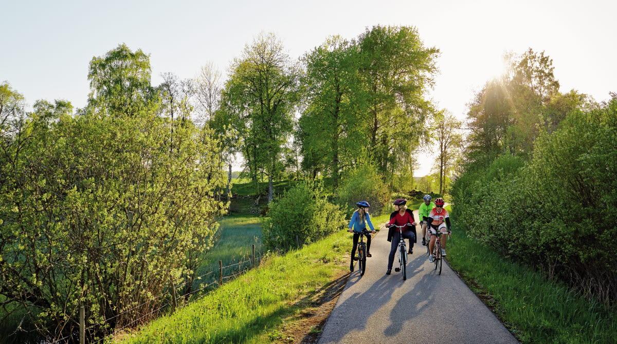 Cyklister på en somtig cykelväg