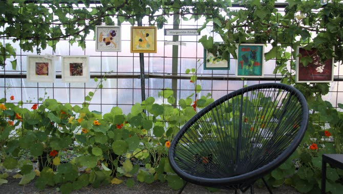 Svart stol i ett växthus med växter.