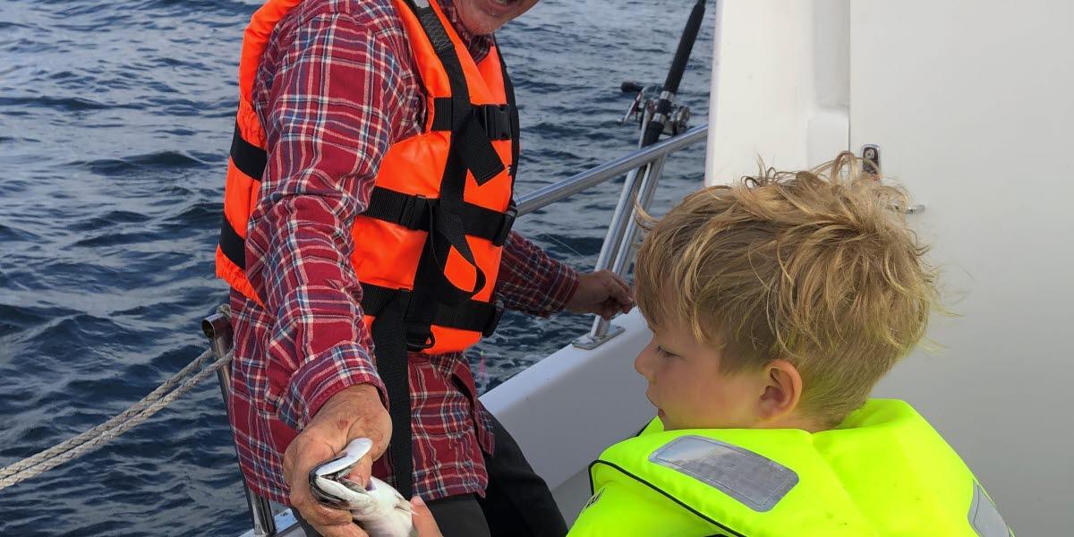 Farfar och barnbarn fiskar makrill ombord på Wendla