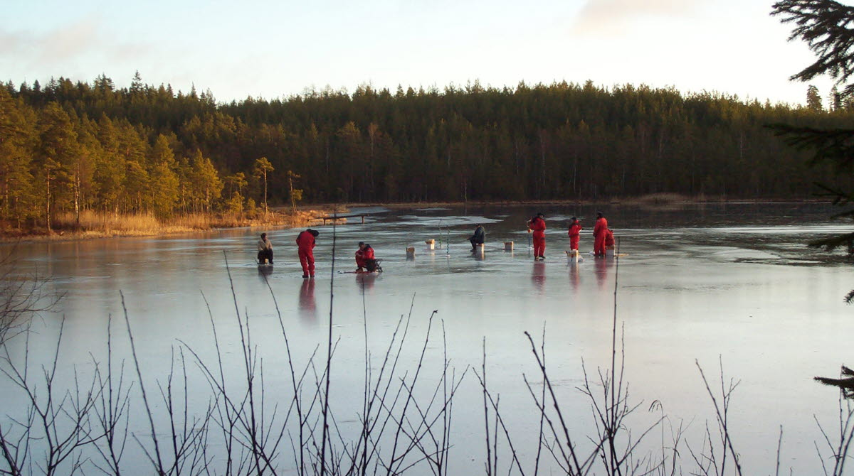 Människor som pimplar ute på isen på en sjö i naturområdet Hökensås.