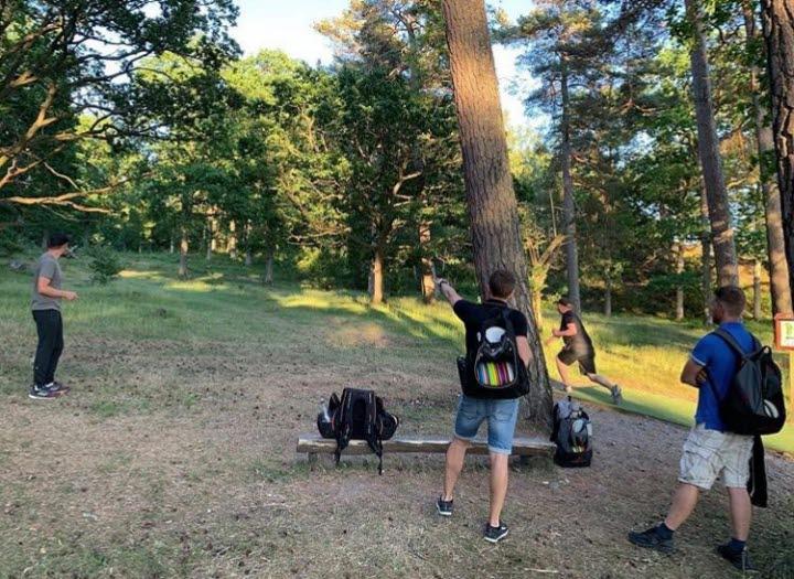 Fyra killar i skogen som spelar discgolf.