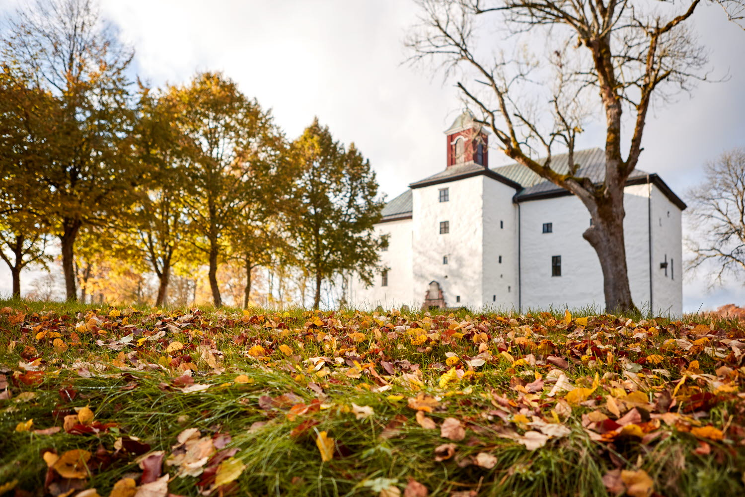 Autumn leaves in front of Torpa Stenhus - Photo Cred Jonas Ingman
