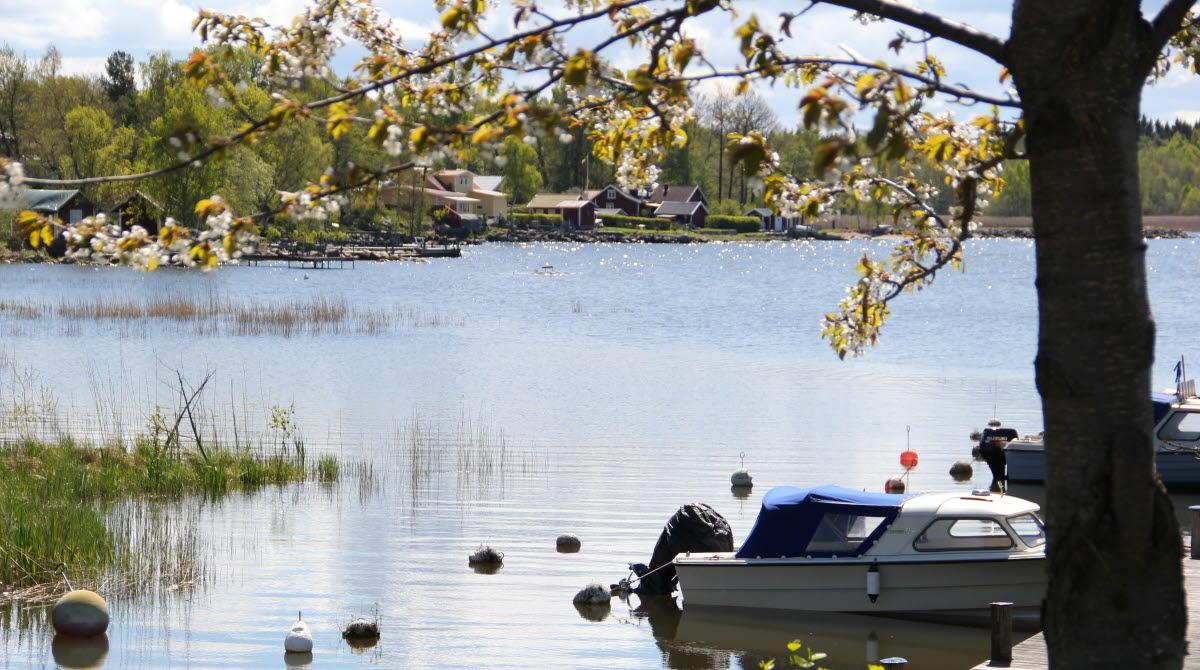 Småbåtar vid brygga i Sjötorp, Vänern.