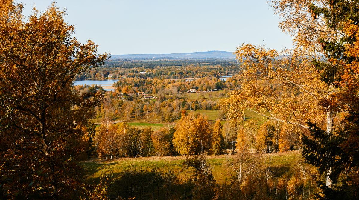 Vandra Jättadalen, Vallebygden