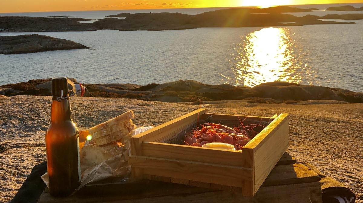 räkor i solnedgång över Smögen