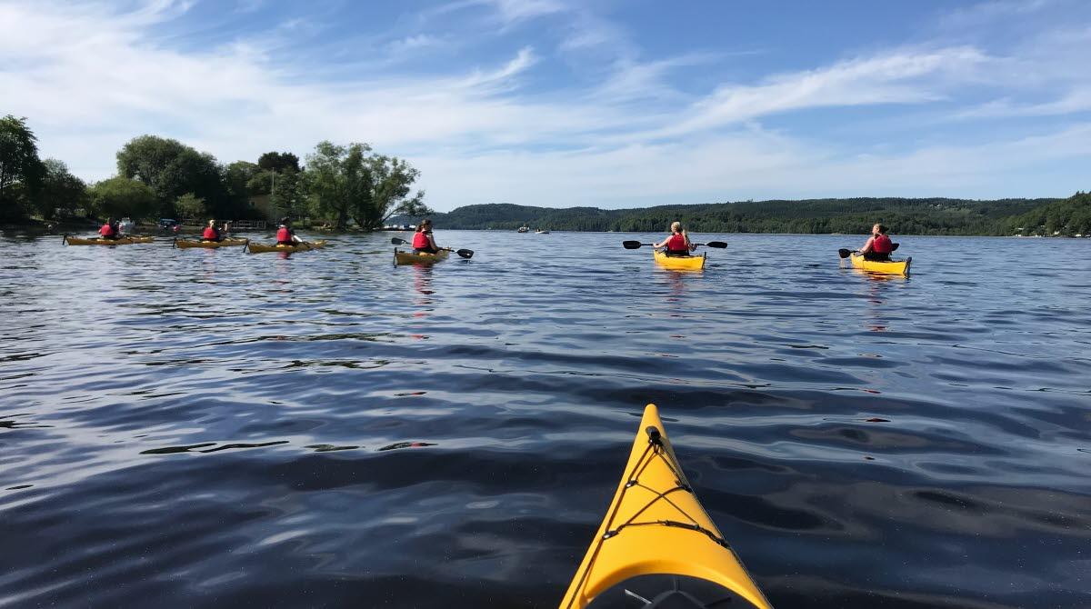 Männsikor i och runt Gula kanoter på en blå sjö i Ulricehamn