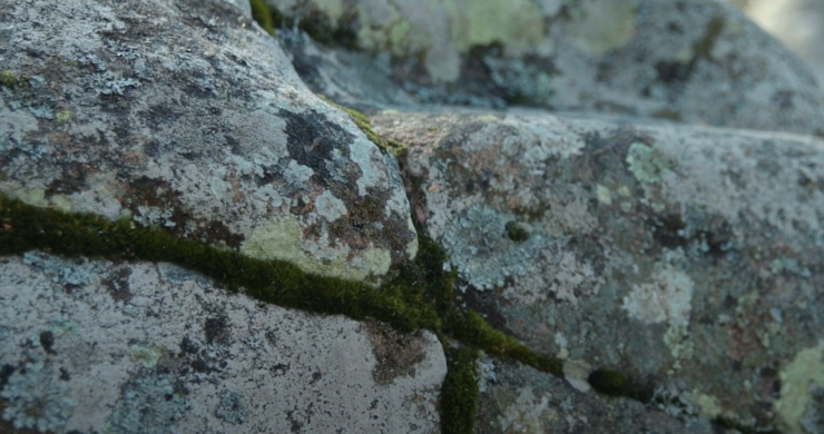 Close up on a stone by Askeberga