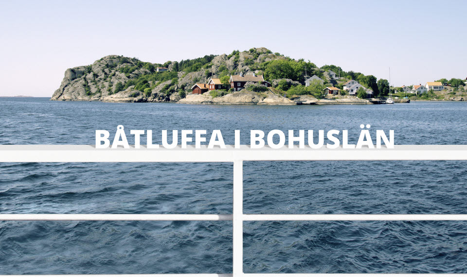 Batluffa_i_bohuslan