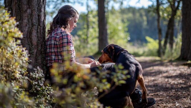 Kvinna sitter i skogen lutad mot en tall och läser en bok i sällskap med sin svarta hund.