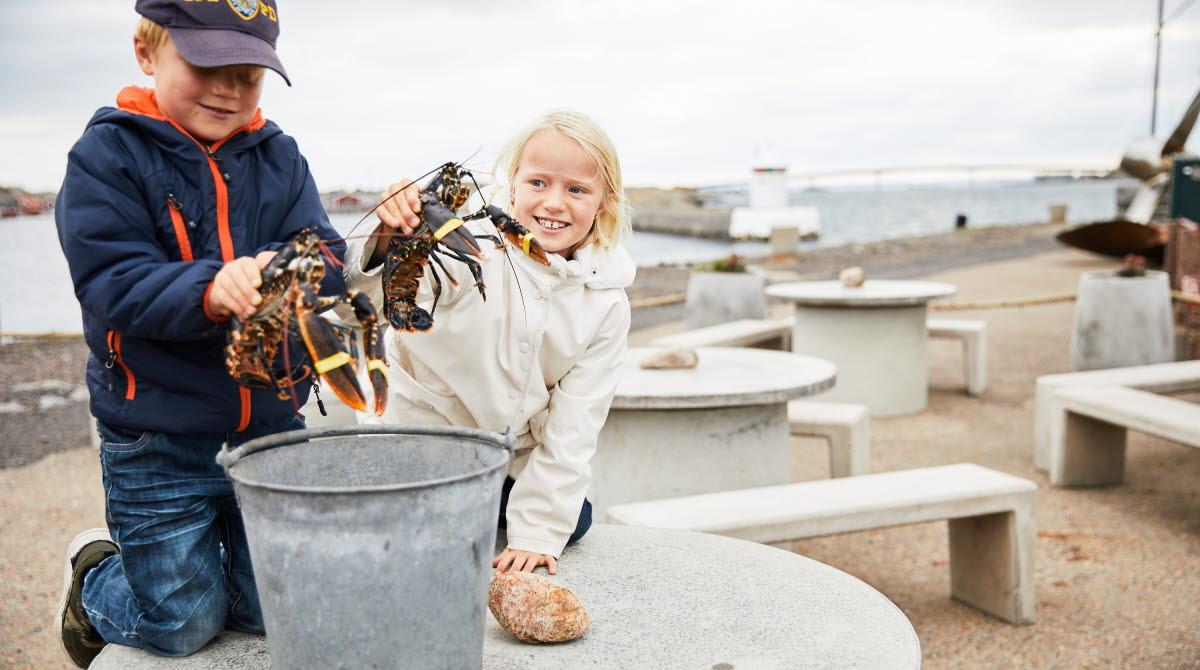 Barn på hummerfiske