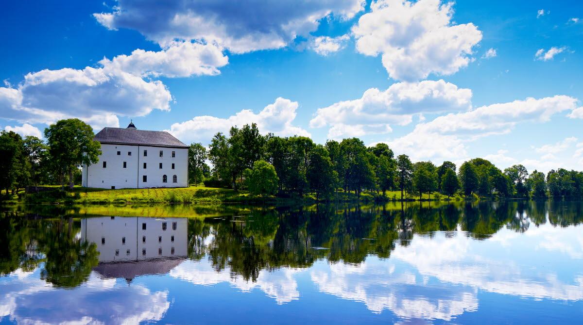 Vitt slott i grön omgivning med en sjö framför