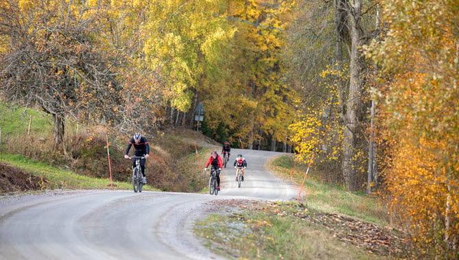 Cyklister på en grusväg.