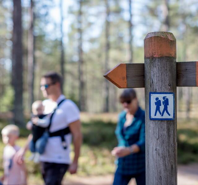 En familj vandrar på Hökensås naturområde.En vägvisare visar vägen.