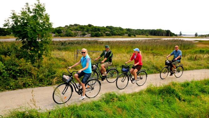 Fyra personer cyklar längst en grusväg på Sydkoster. Vägen kantas av gröna gräsängar.