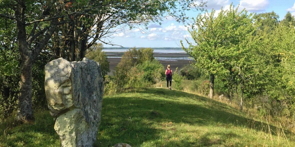 En vandrare på pilgrimsleden