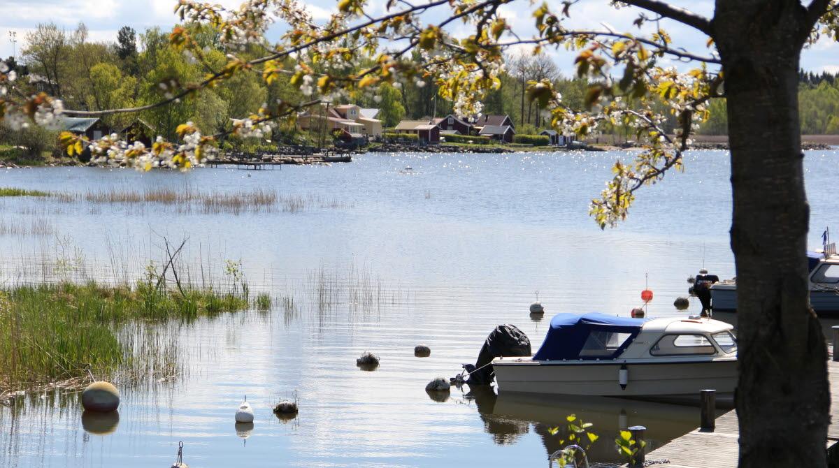 Small boats at jetty in Sjötorp, lake Vänern.