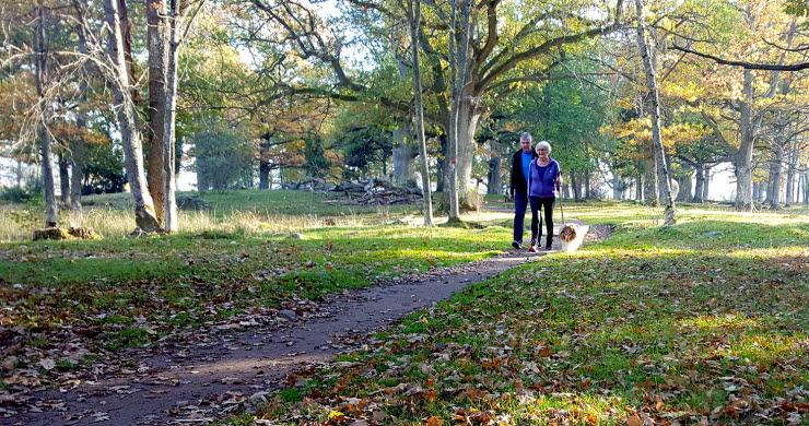 Höstpromenad med hund på Gamla Ekudden i Mariestad.