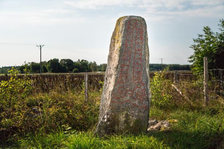 Bild på Vallbys runsten. I bakgrunden syns gräs och ett stängsel.