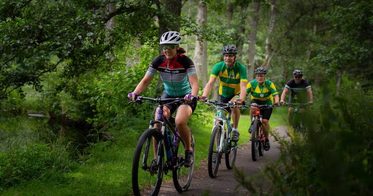 MTB-cyklister i skogen.
