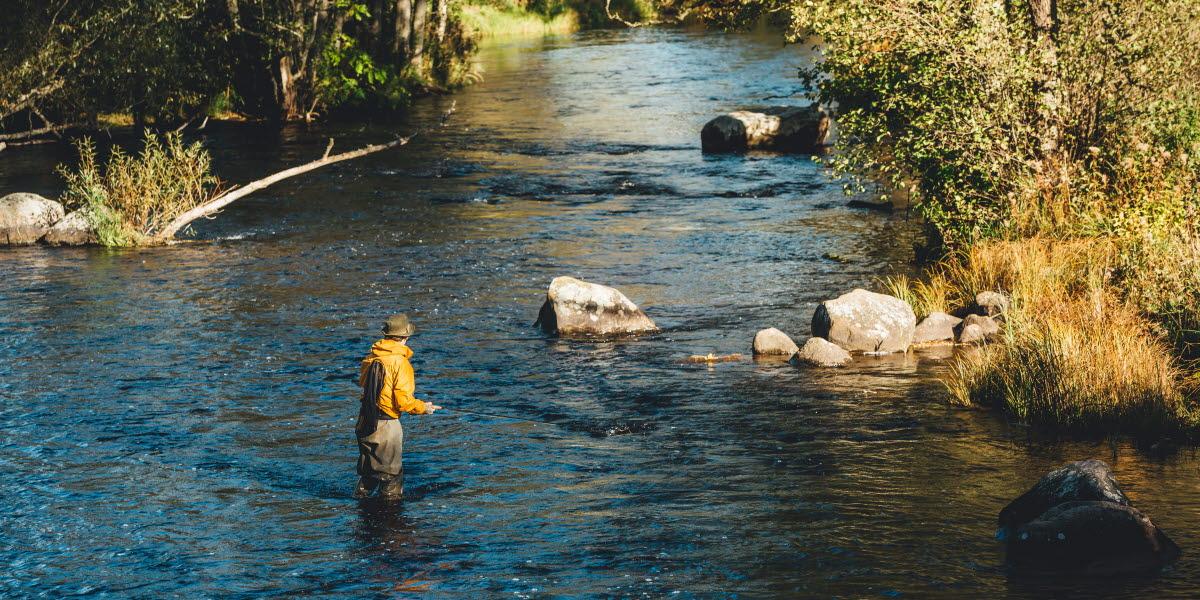 En man som står i en sjö och flugfiskar