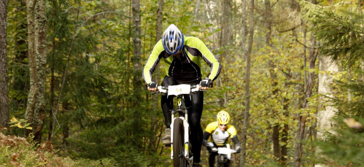 Två MTB cyklister tävlar på bana i skogen en vårdag i solen