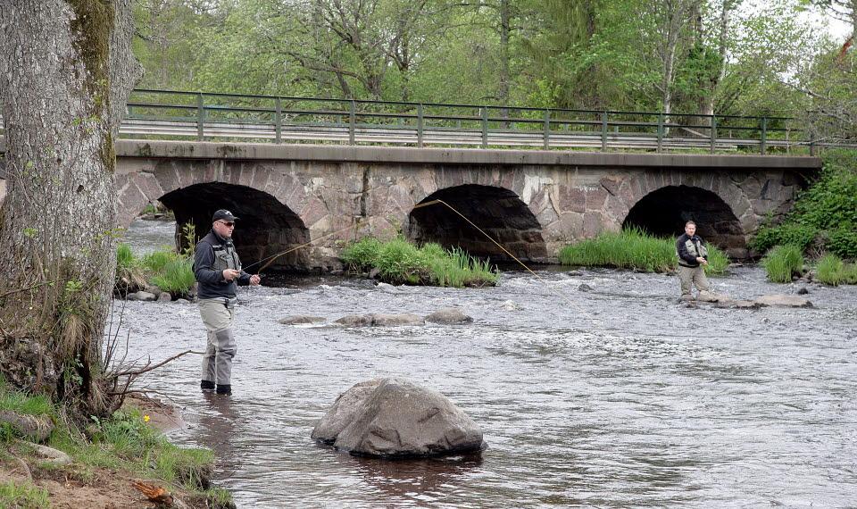 Två män står och fiskar i ån Tidan. En stenbro i bakgrunden.