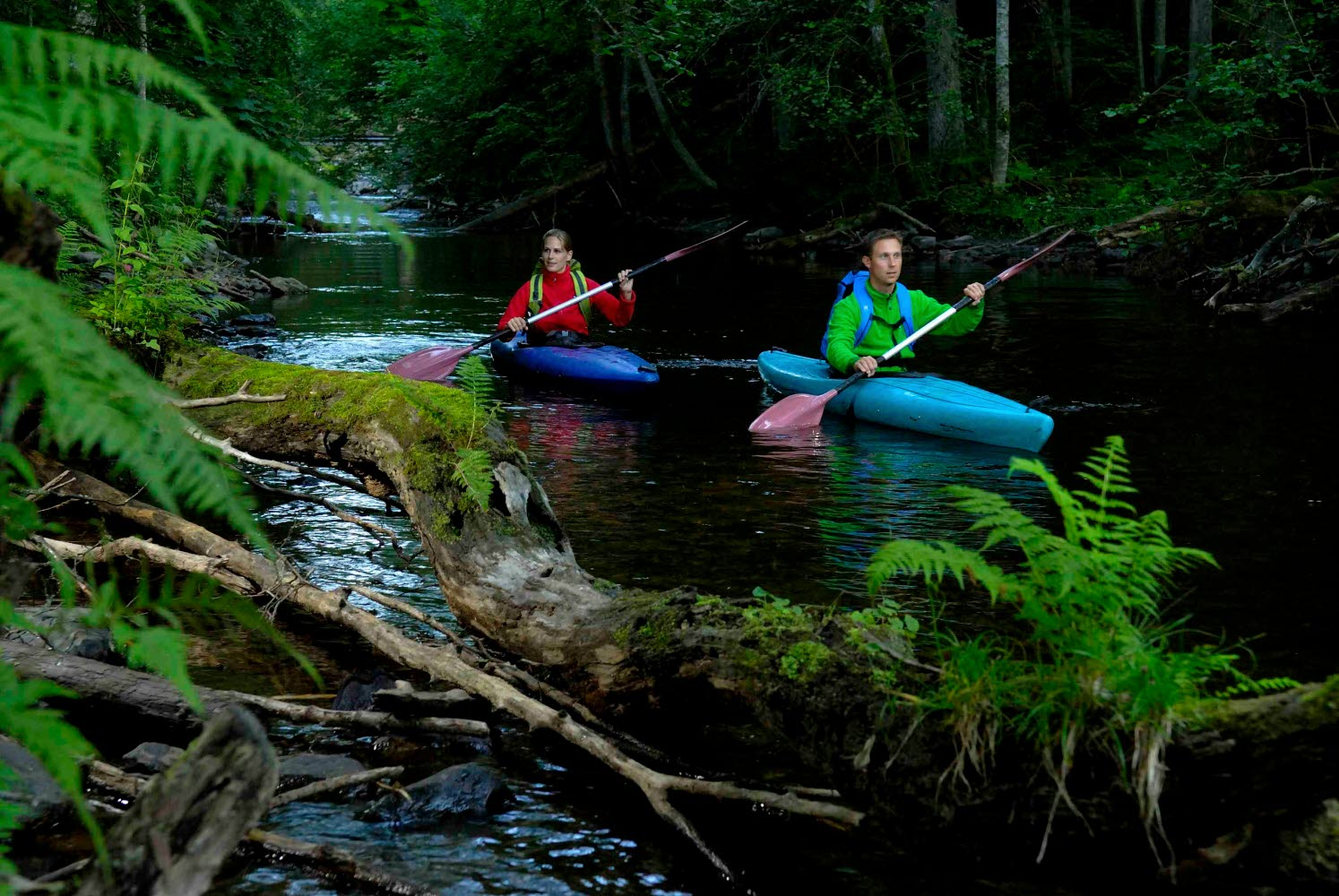 Couple kayaking on a river surrounded by forest - Photo Göran Assner.jpg