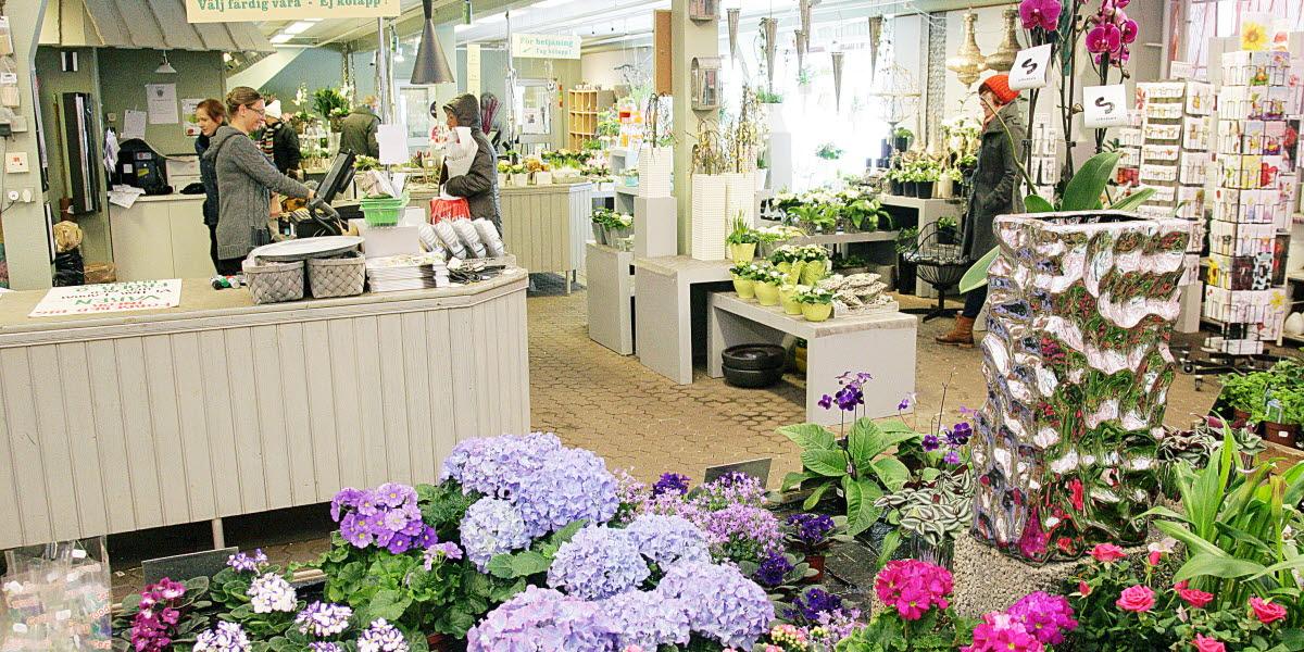 Interiör från Lidéns blomsterhandel i Tidaholm.