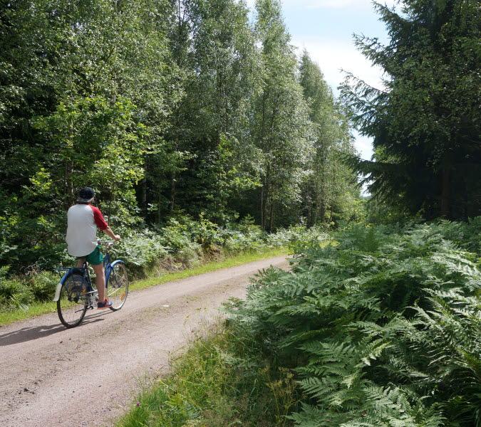 Cykling runt Örlen