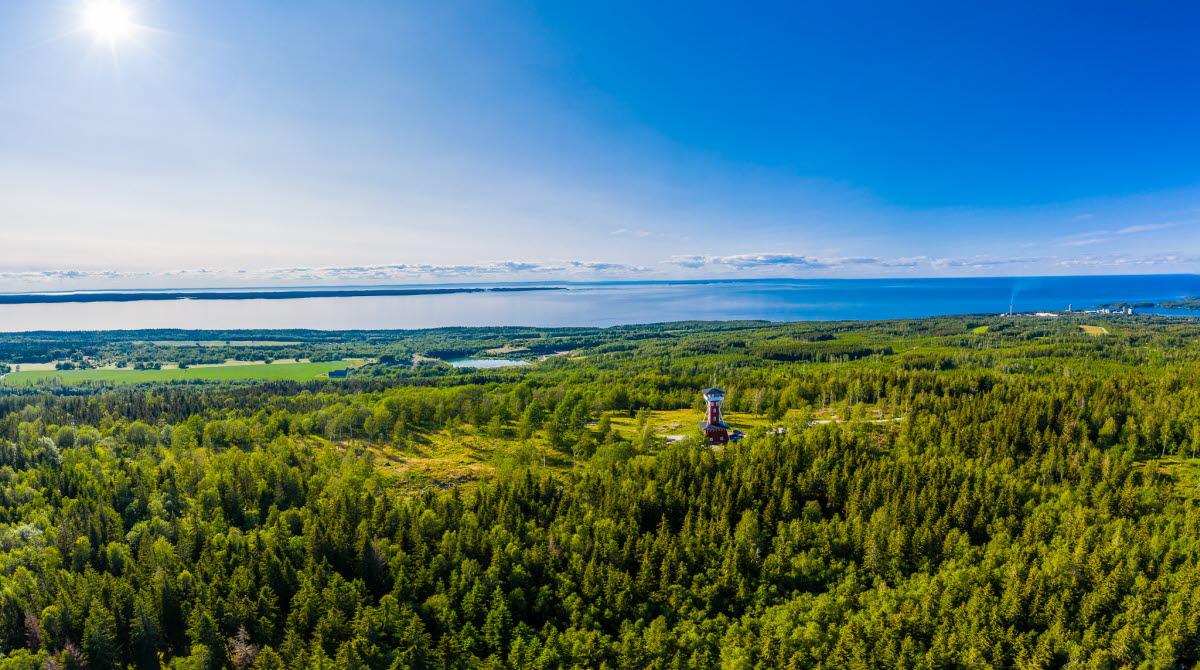 Flygbild över ett grönskande Kinnekulle med Vänern i bakgrunden. Man kan även skymta Kinnekulle utsiktstorn.