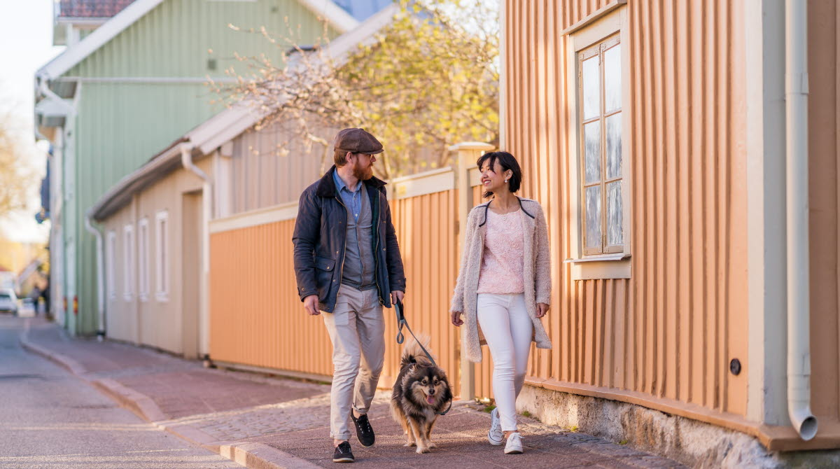 A couple walking their dog during spring time, along the street Långgatan, located right in the middle of the old parts of the wooden town in Hjo.