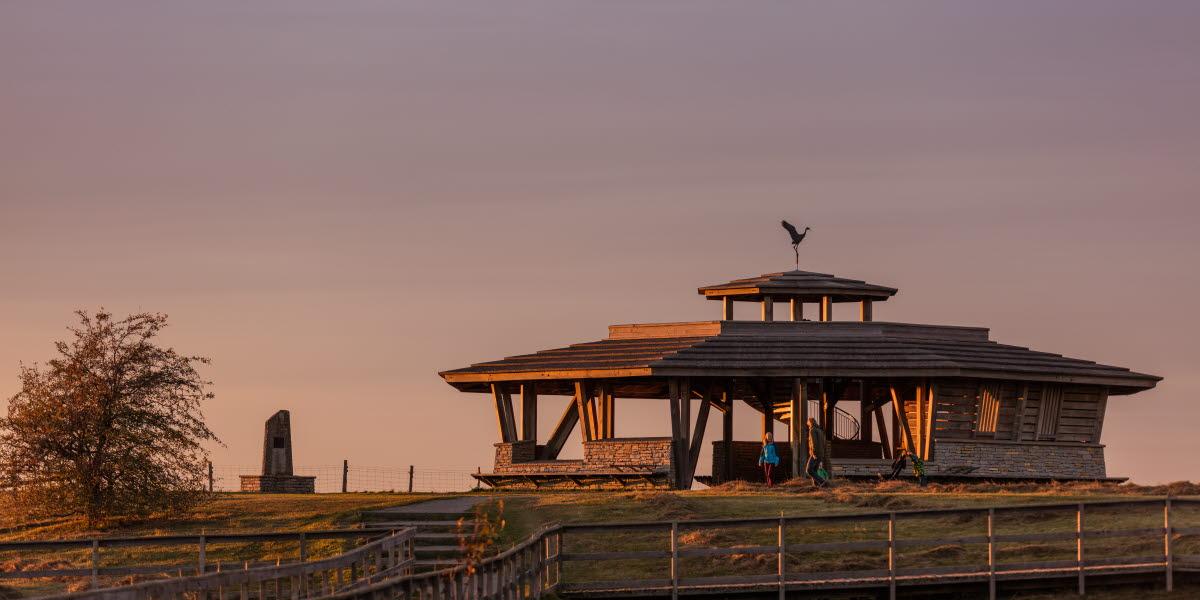 Fågeltorn vid naturum Hornborgasjön