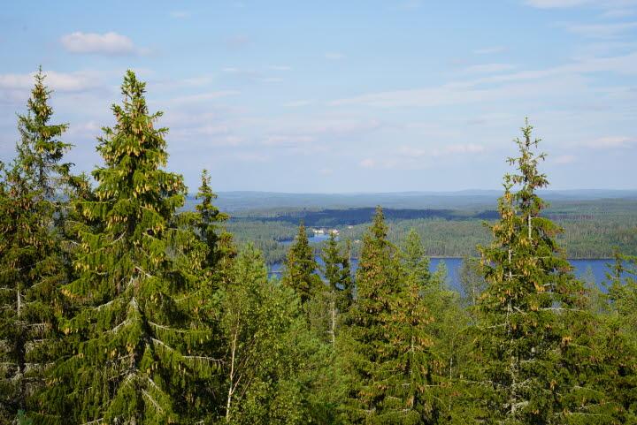 Utsikt över Lelången och mot Gustavsfors