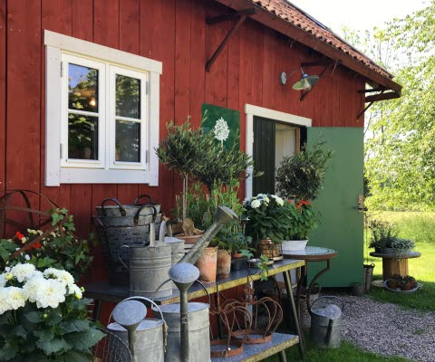 Ingången till gårdsbutiken pyntad med vackra blomdekorationer
