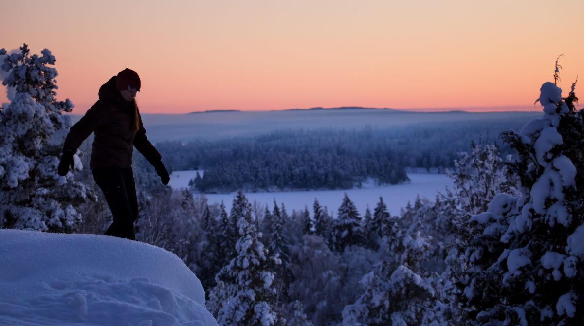 Winter in Dalsland