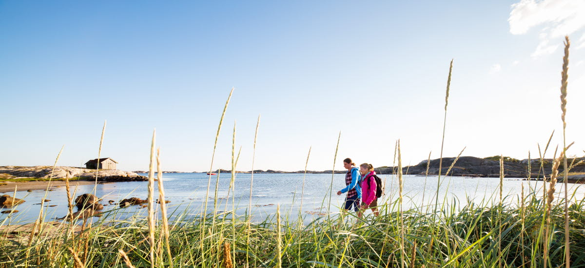 Two people are walking a long a beach at South Koster. Tall grass is in the foreground.