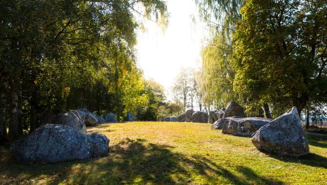 24 klumpformade stenar ligger på marken i form av ett skepp omgivet av björkar.